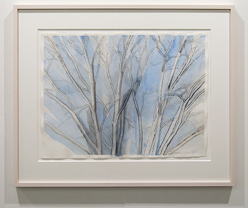 Sylvia Plimack-Mangold / Sylvia Plimack Mangold Blue Pin Oak  2012  45.5 x 60 cm graphite, watercolor and oil on paper