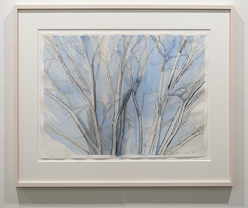 Sylvia Plimack-Mangold / Sylvia Plimack Mangold Blue Pin Oak  2012  45.5 x 60 cm graphite, watercolor and oil on paper