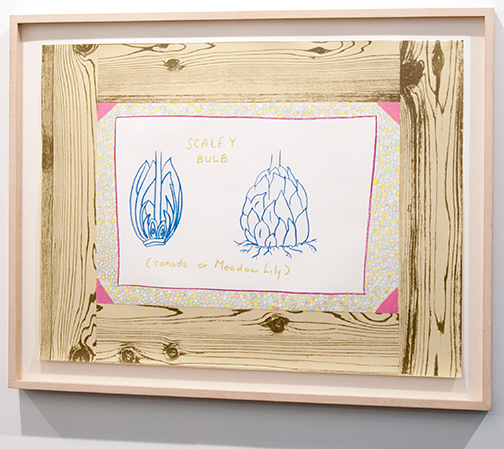 Ree Morton / Ree Morton Untitled (Woodgrain,Scaley Bulb)  1974 48,5 x 61,5 cm crayon and colored pencil on printed paper