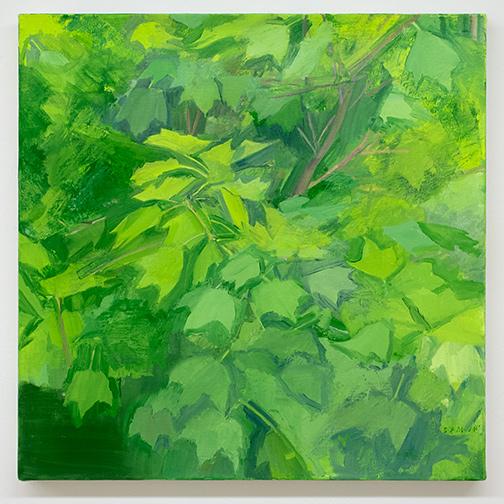 Sylvia Plimack-Mangold / Sylvia Plimack Mangold Summer Maple Detail  2014 61 x 61 cm oil on linen