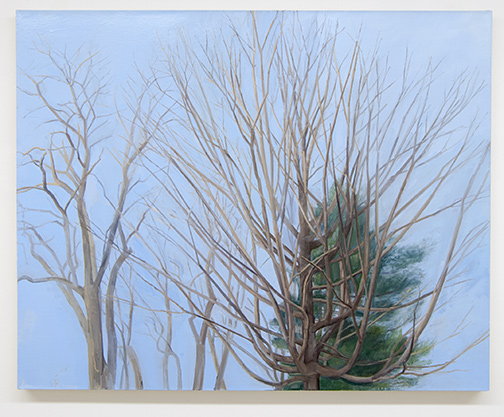 Sylvia Plimack-Mangold / Sylvia Plimack Mangold The Maple with Locust and Pine  2003  101.6 x 127 cm Oil on linen