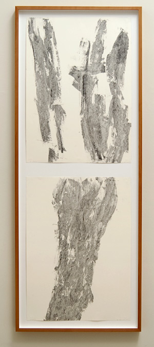 David Rabinowitch / David Rabinowitch 2-part vertical drawing  1995 103 x 74 cm Kohle und Bienenwax auf Papier