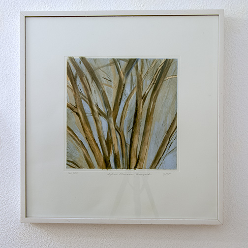 Sylvia Plimack-Mangold / Sylvia Plimack Mangold Winter Elm  1995 52.7 x 50.2 cm etching and aquatint Edition 20/30
