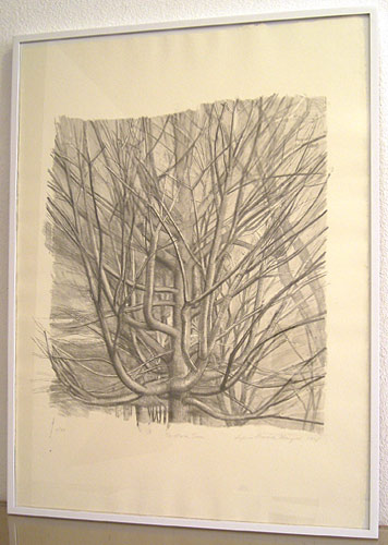 "Sylvia Plimack-Mangold / The Maple Tree  1998 Lithographie 81.3 x 59 cm / 32 x 23 1/4 "" Edition 9/40"