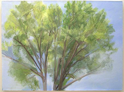 "Sylvia Plimack-Mangold / The Pin Oak (Summer) 2004  2004 114 x 155 cm / 45 x 61 "" oil on linen"