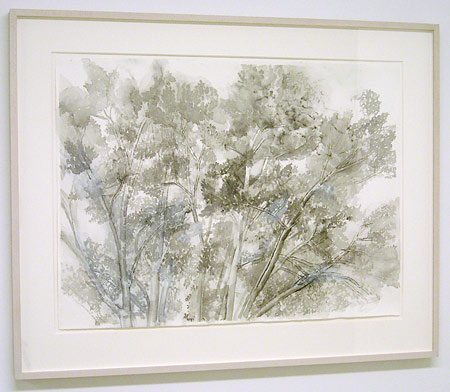 "Sylvia Plimack-Mangold / The Pin Oak 9/9/05   2005 55.9 x 75.6 cm / 22 x 29.75 "" watercolor and pencil on paper"