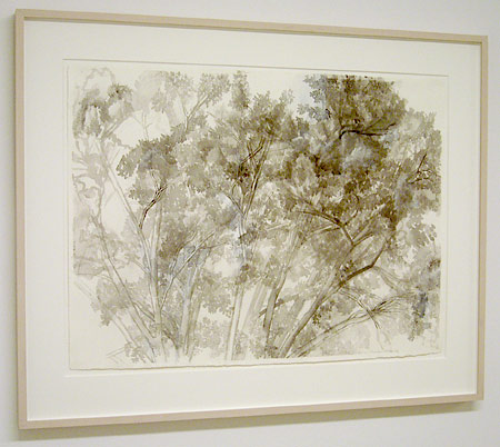 "Sylvia Plimack-Mangold / The Pin Oak 7/5/06  2006 55.5 x 75.5 cm / 21.875 x 29.75 "" watercolor and pencil on paper"