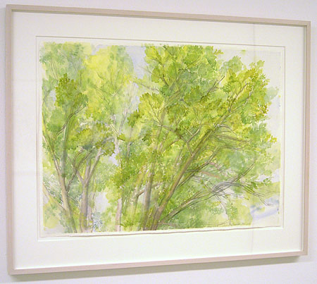 "Sylvia Plimack-Mangold / The Pin Oak May 2007  2007 55.8 x 76.2 cm / 22 x 30 "" watercolor and pencil on paper"
