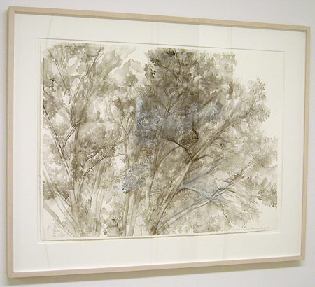 "Sylvia Plimack-Mangold / The Pin Oak 6/21/07  2007 55.8 x 76.2 cm / 22 x 30 "" watercolor and pencil on paper"