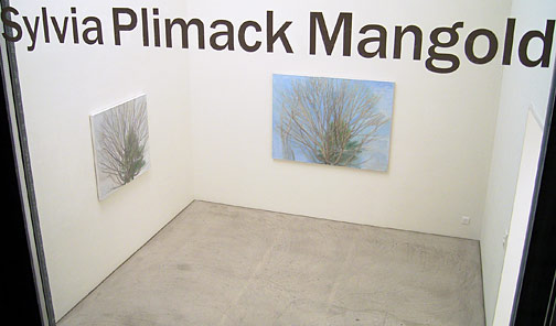 Sylvia Plimack-Mangold / Sylvia Plimack-Mangold